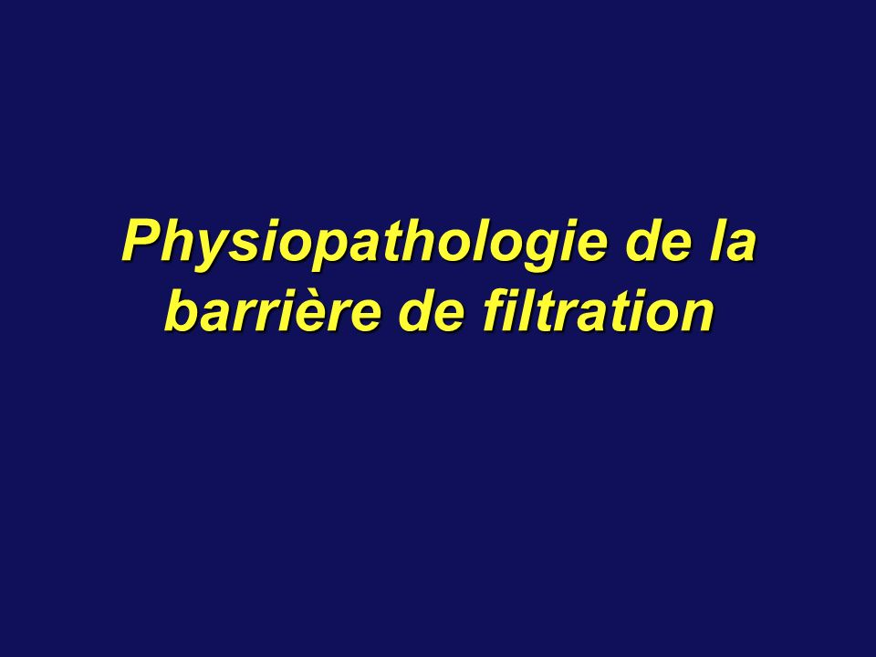 Diagnostic des Hématuries