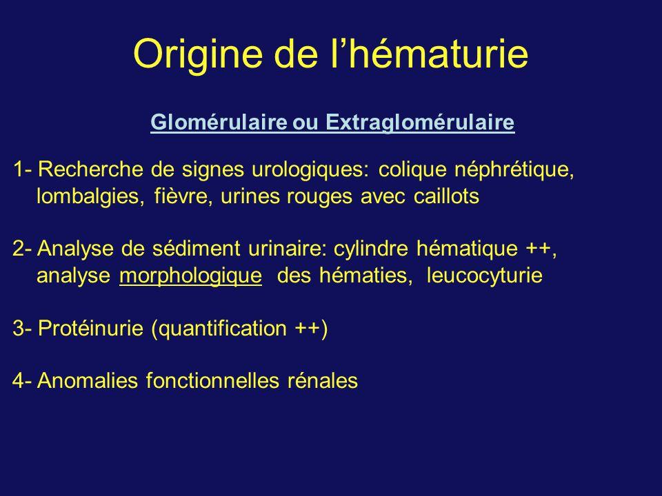 Origine de lhématurie Glomérulaire ou Extraglomérulaire 1- Recherche de signes urologiques: colique néphrétique, lombalgies, fièvre, urines rouges ave