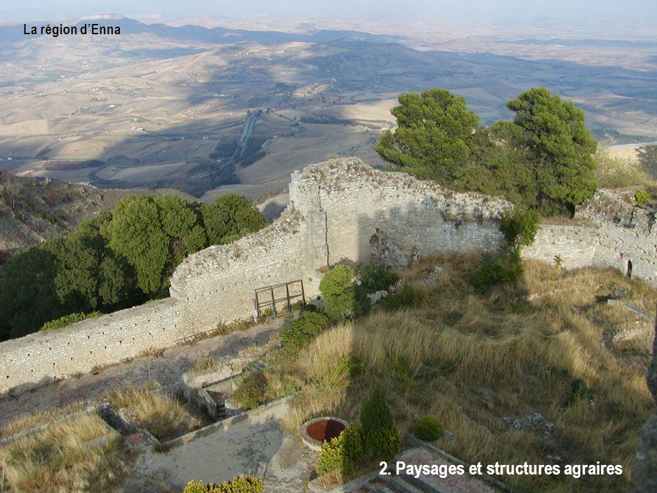 La région dEnna 2. Paysages et structures agraires
