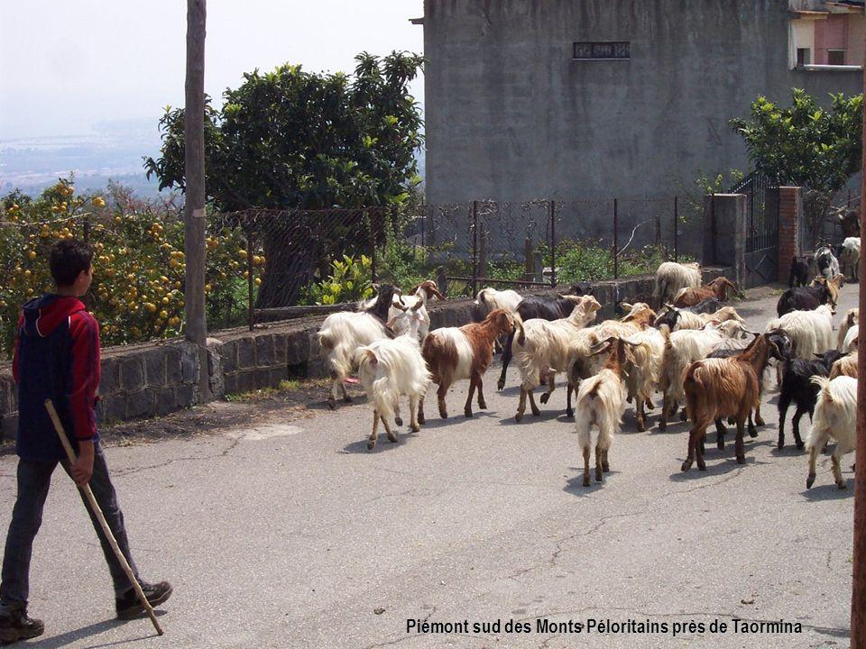 Piémont sud des Monts Péloritains près de Taormina