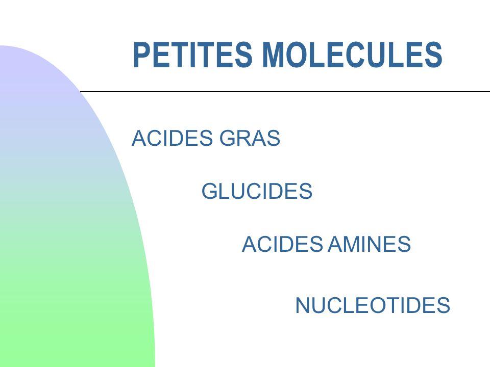 PETITES MOLECULES ACIDES GRAS GLUCIDES ACIDES AMINES NUCLEOTIDES