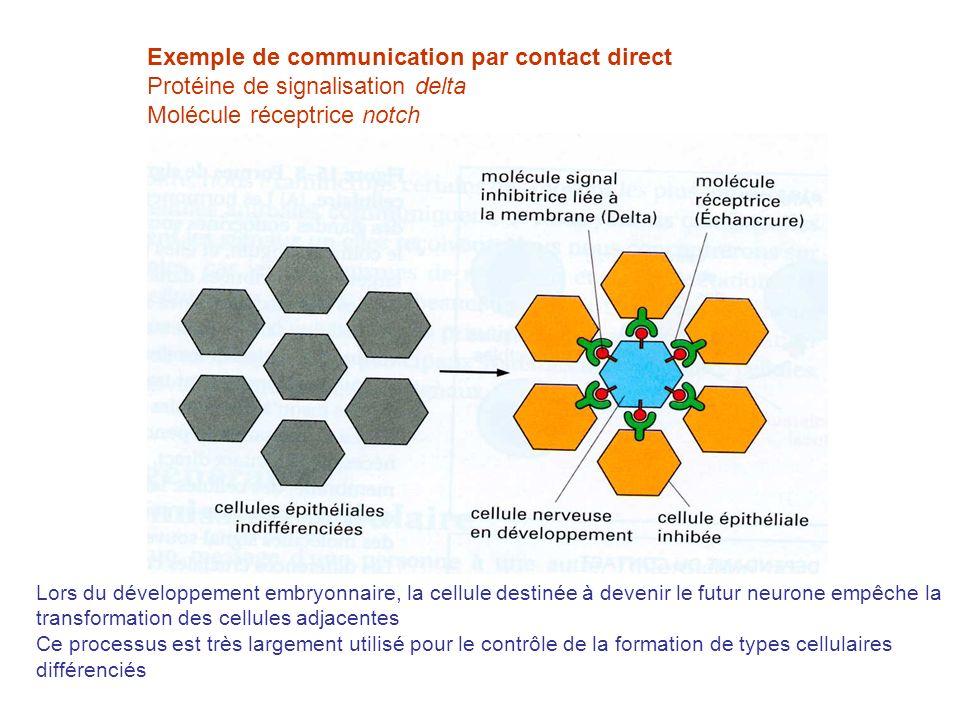 Les moyens de la transmission chimique La cellule est soumise à lafflux de nombreux types de signaux Sélection du signal selon la fonction de la cellule et son état Existence de récepteurs appropriés