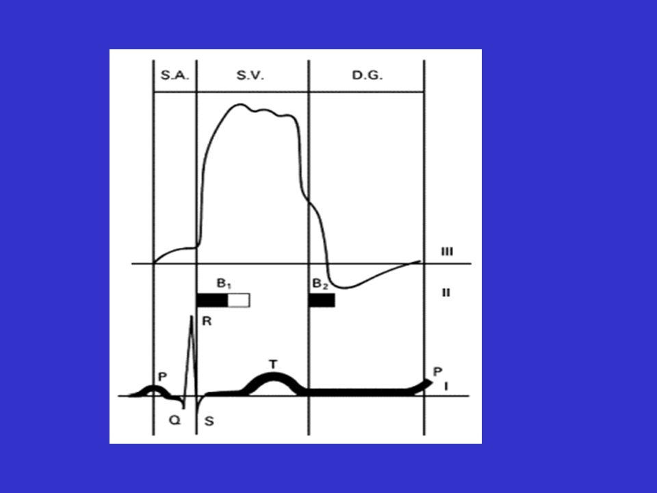 Souffle chez lenfant: sémiologie B1: fermeture des valves A-V B2: dédoublement variable; fermeture décalée des valves déjection: dabord aortique puis pulmonaire B3 fréquent chez lenfant 50%, remplissage rapide du ventricule B4 trouble de la compliance du ventricule (se distend mal)