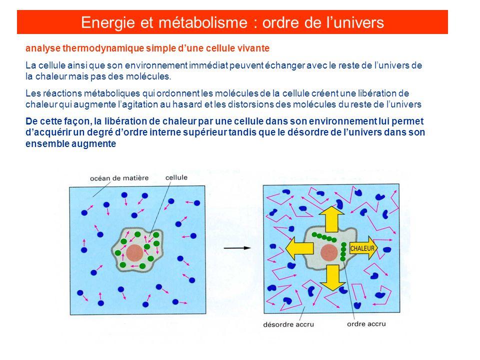 analyse thermodynamique simple dune cellule vivante La cellule ainsi que son environnement immédiat peuvent échanger avec le reste de lunivers de la c
