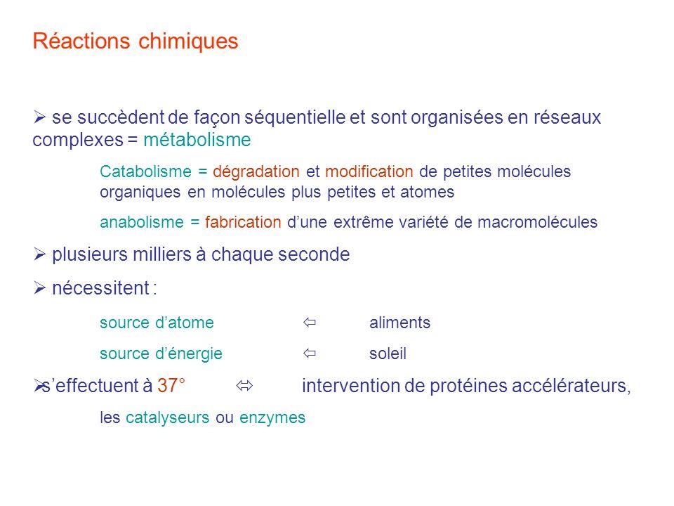 Réactions chimiques se succèdent de façon séquentielle et sont organisées en réseaux complexes = métabolisme Catabolisme = dégradation et modification