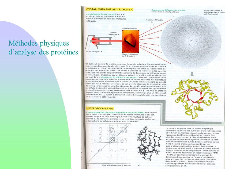 Méthodes physiques danalyse des protéines
