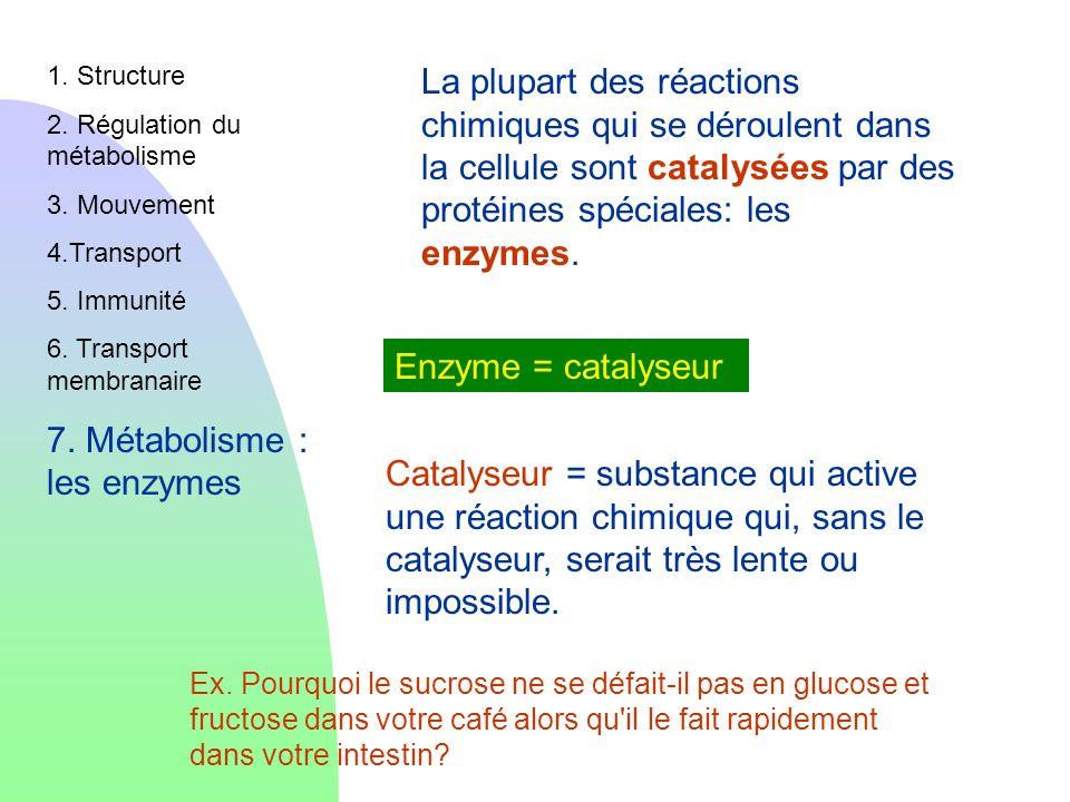 Catalyseur = substance qui active une réaction chimique qui, sans le catalyseur, serait très lente ou impossible. Ex. Pourquoi le sucrose ne se défait