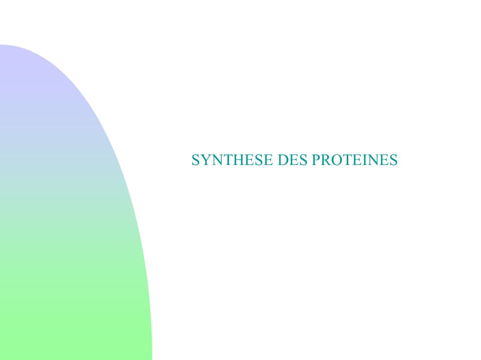SYNTHESE DES PROTEINES