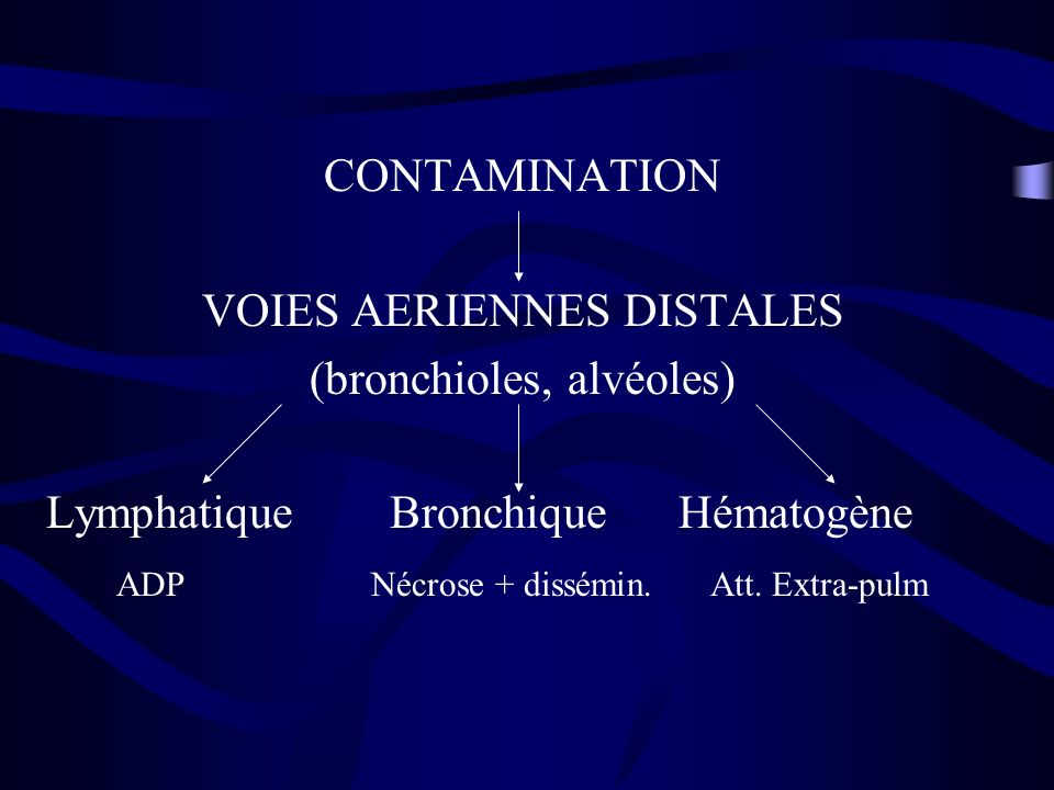 CONTAMINATION VOIES AERIENNES DISTALES (bronchioles, alvéoles) Lymphatique Bronchique Hématogène ADP Nécrose + dissémin. Att. Extra-pulm