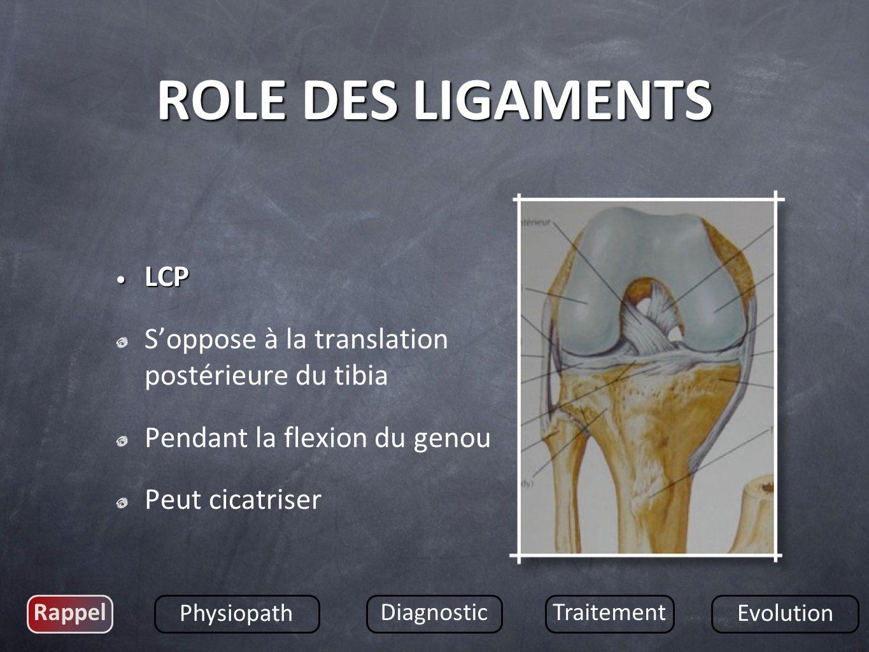 LCP LCP Soppose à la translation postérieure du tibia Pendant la flexion du genou Peut cicatriser Rappel Physiopath DiagnosticTraitement Evolution ROL