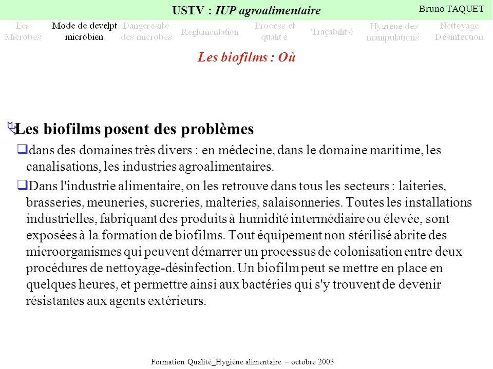 Formation Qualité_Hygiène alimentaire – octobre 2003 USTV : IUP agroalimentaire Bruno TAQUET Les biofilms : Où Les biofilms posent des problèmes dans