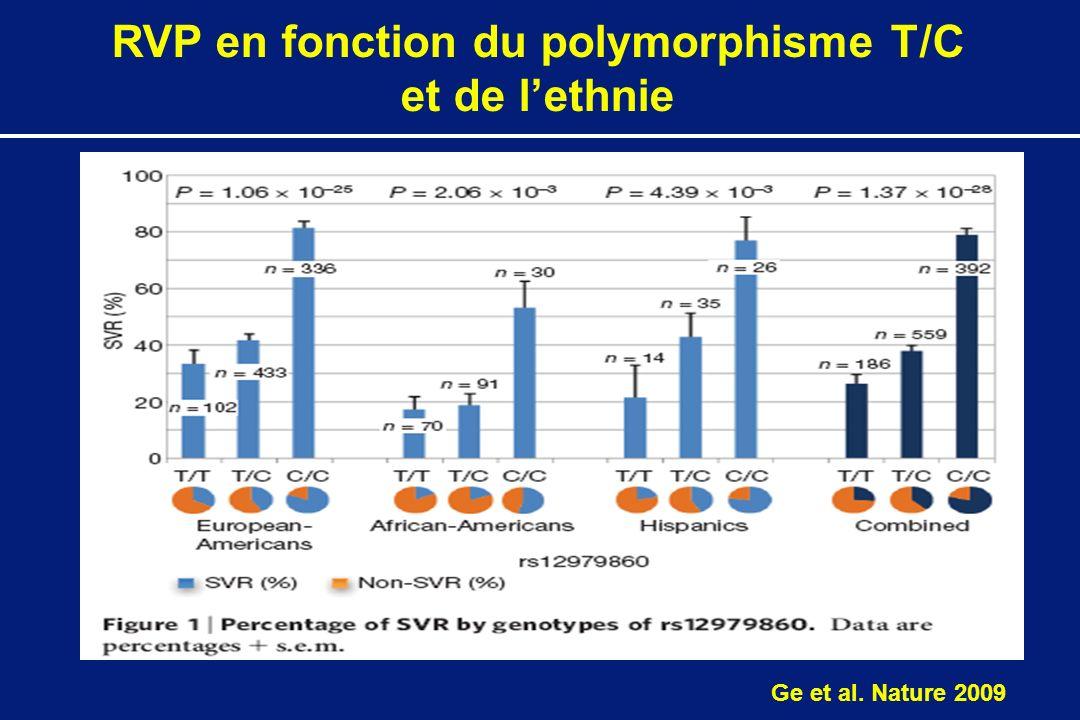 RVP en fonction du polymorphisme T/C et de lethnie