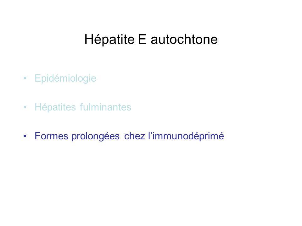 Hépatite E autochtone Epidémiologie Hépatites fulminantes Formes prolongées chez limmunodéprimé