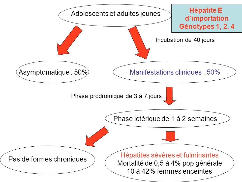 Adolescents et adultes jeunes Manifestations cliniques : 50% Incubation de 40 jours Phase prodromique de 3 à 7 jours Phase ictérique de 1 à 2 semaines