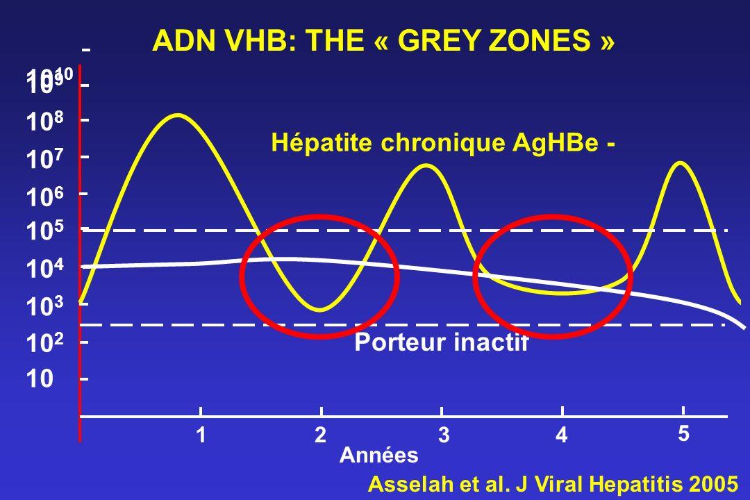10 10 2 10 3 10 4 10 5 10 6 10 7 10 8 10 9 10 1234 Années Hépatite chronique AgHBe - Porteur inactif 5 ADN VHB: THE « GREY ZONES » Asselah et al. J Vi
