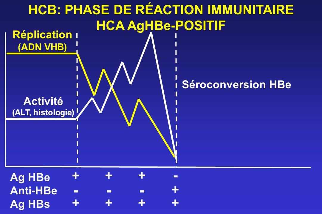 HCB: PHASE DE RÉACTION IMMUNITAIRE HCA AgHBe-POSITIF Réplication (ADN VHB) Activité (ALT, histologie) Ag HBe Anti-HBe Ag HBs - + + + - -- + ++++ Séroc