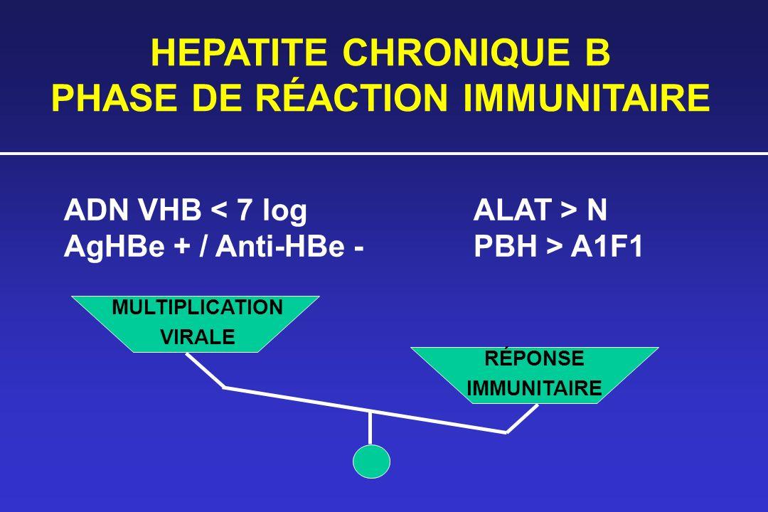 HEPATITE CHRONIQUE B PHASE DE RÉACTION IMMUNITAIRE ADN VHB N AgHBe + / Anti-HBe -PBH > A1F1 MULTIPLICATION VIRALE RÉPONSE IMMUNITAIRE