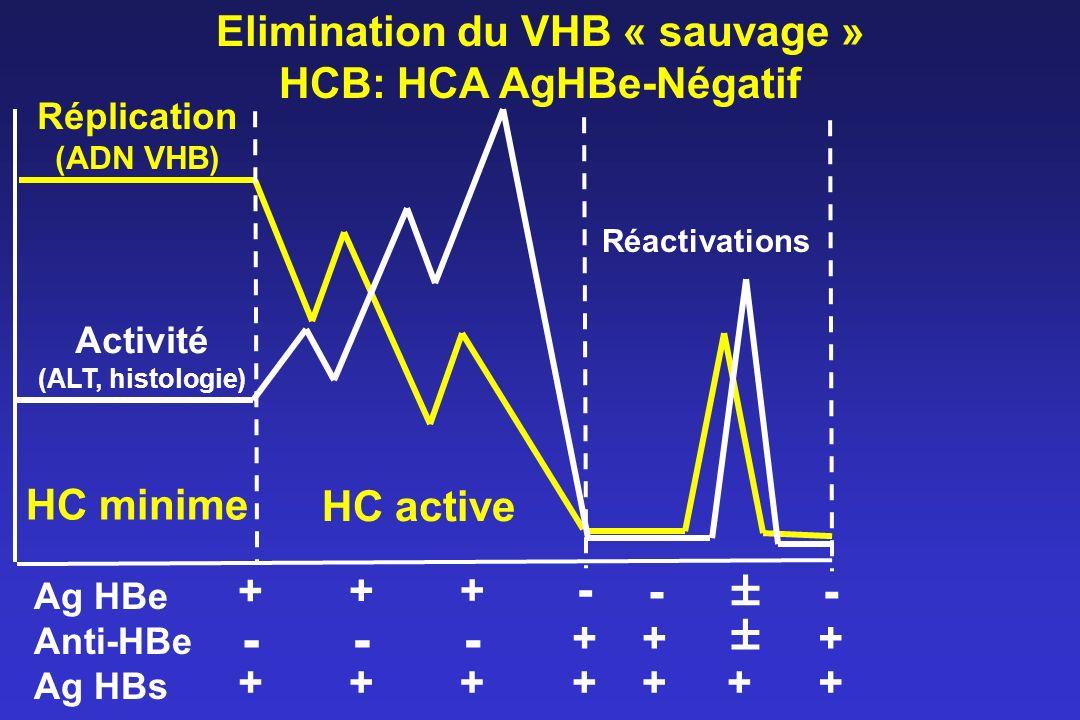 Elimination du VHB « sauvage » HCB: HCA AgHBe-Négatif Réplication (ADN VHB) Activité (ALT, histologie) Réactivations Ag HBe Anti-HBe Ag HBs - + + + -