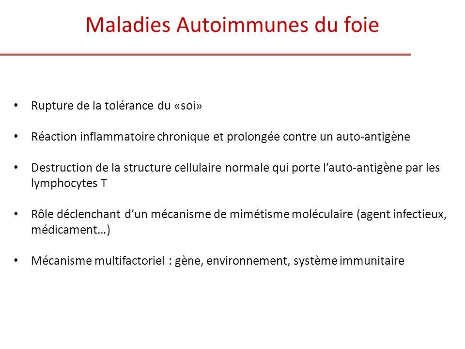Maladies Autoimmunes du foie Rupture de la tolérance du «soi» Réaction inflammatoire chronique et prolongée contre un auto-antigène Destruction de la
