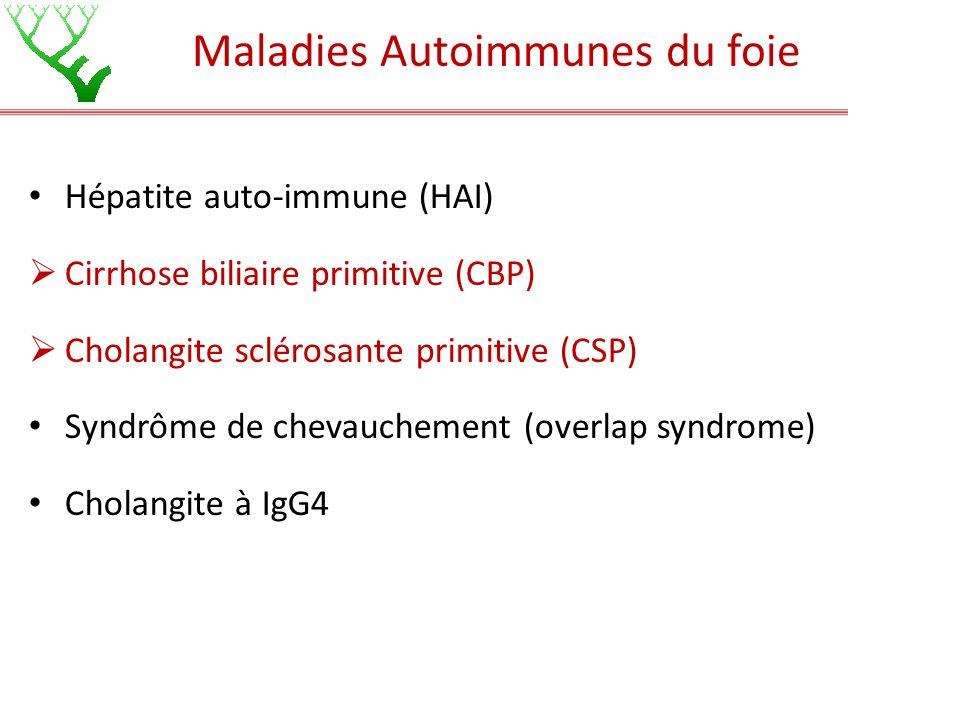 Maladies Autoimmunes du foie Hépatite auto-immune (HAI) Cirrhose biliaire primitive (CBP) Cholangite sclérosante primitive (CSP) Syndrôme de chevauche