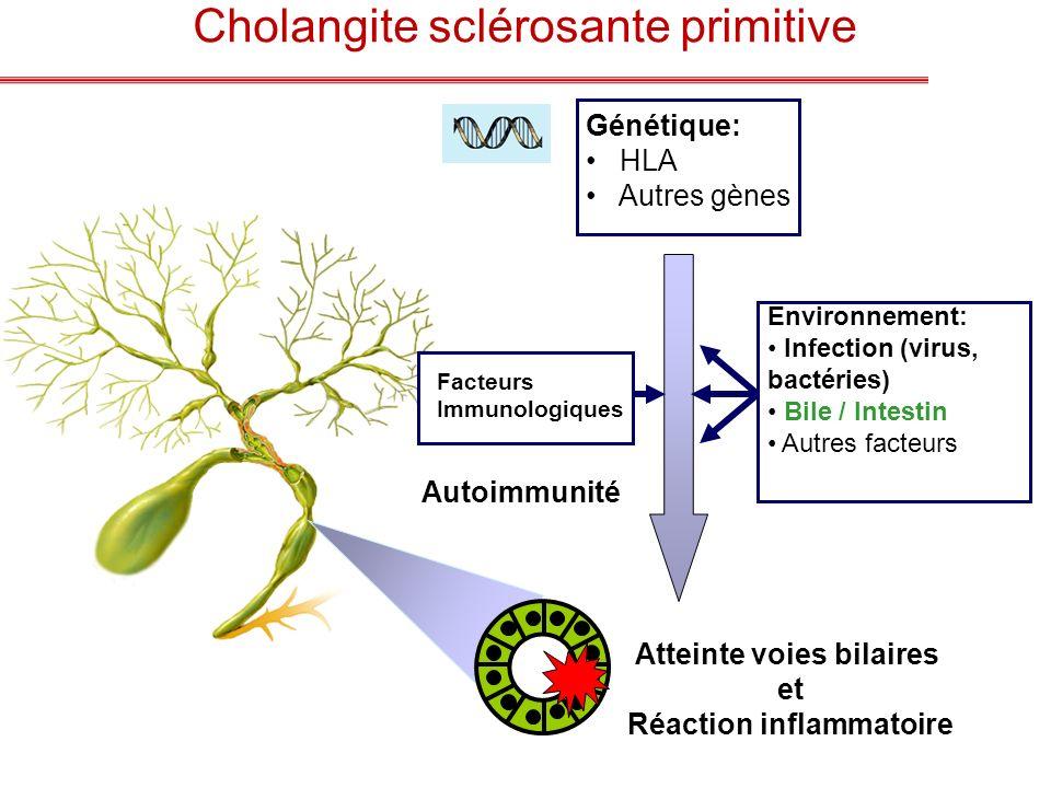 Atteinte voies bilaires et Réaction inflammatoire Environnement: Infection (virus, bactéries) Bile / Intestin Autres facteurs Facteurs Immunologiques