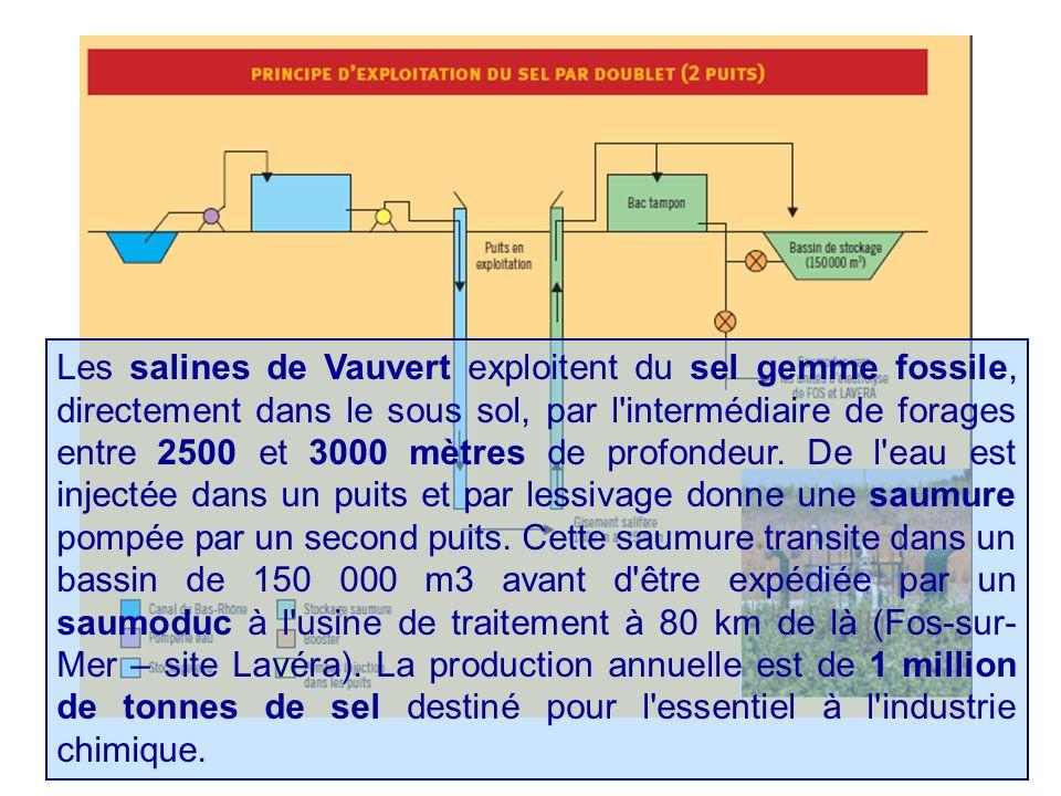 Les salines de Vauvert exploitent du sel gemme fossile, directement dans le sous sol, par l'intermédiaire de forages entre 2500 et 3000 mètres de prof