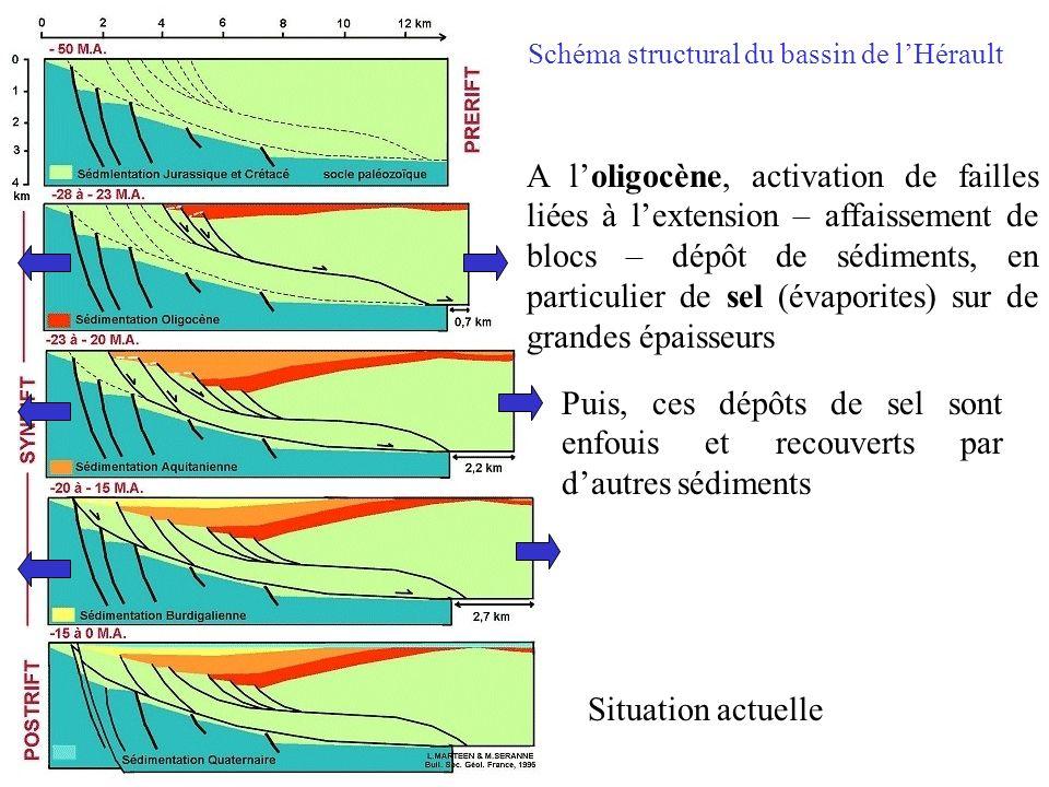 Schéma structural du bassin de lHérault A loligocène, activation de failles liées à lextension – affaissement de blocs – dépôt de sédiments, en partic