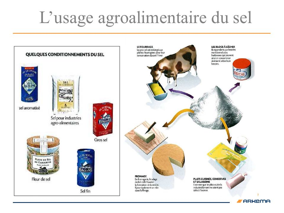 Lusage agroalimentaire du sel