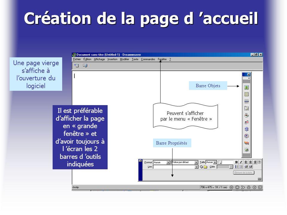 Création de la page d accueil Une page vierge saffiche à louverture du logiciel Il est préférable dafficher la page en « grande fenêtre » et davoir to