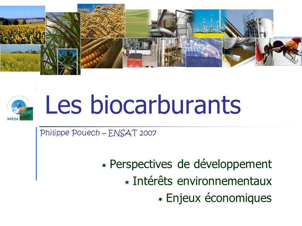 Les biocarburants Perspectives de développement Intérêts environnementaux Enjeux économiques Philippe Pouech – ENSAT 2007
