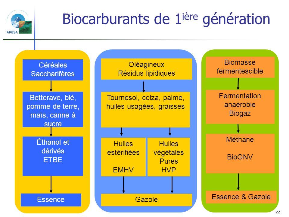 22 Biomasse fermentescible Essence & Gazole Fermentation anaérobie Biogaz Méthane BioGNV Céréales Saccharifères Betterave, blé, pomme de terre, maïs,