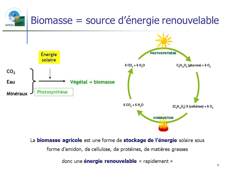 5 La biomasse agricole est une forme de stockage de lénergie solaire sous forme damidon, de cellulose, de protéines, de matières grasses donc une éner