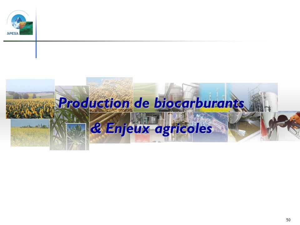 50 Production de biocarburants et surfaces agricoles Production de biocarburants & Enjeux agricoles