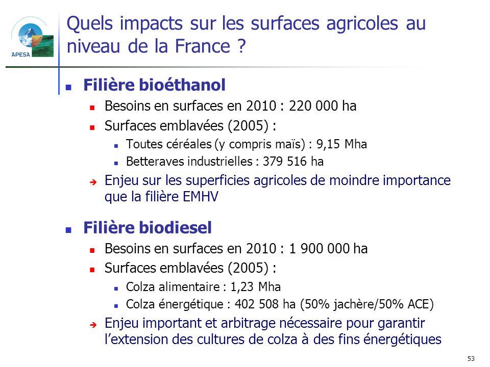 53 Quels impacts sur les surfaces agricoles au niveau de la France ? Filière bioéthanol Besoins en surfaces en 2010 : 220 000 ha Surfaces emblavées (2