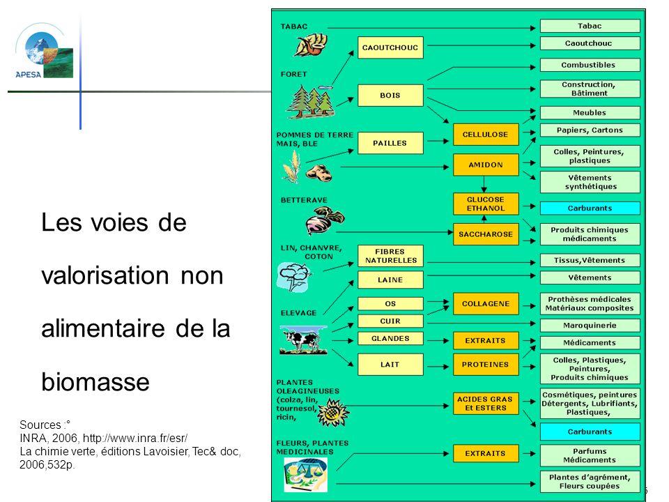 6 Les voies de valorisation non alimentaire de la biomasse Sources :° INRA, 2006, http://www.inra.fr/esr/ La chimie verte, éditions Lavoisier, Tec& do