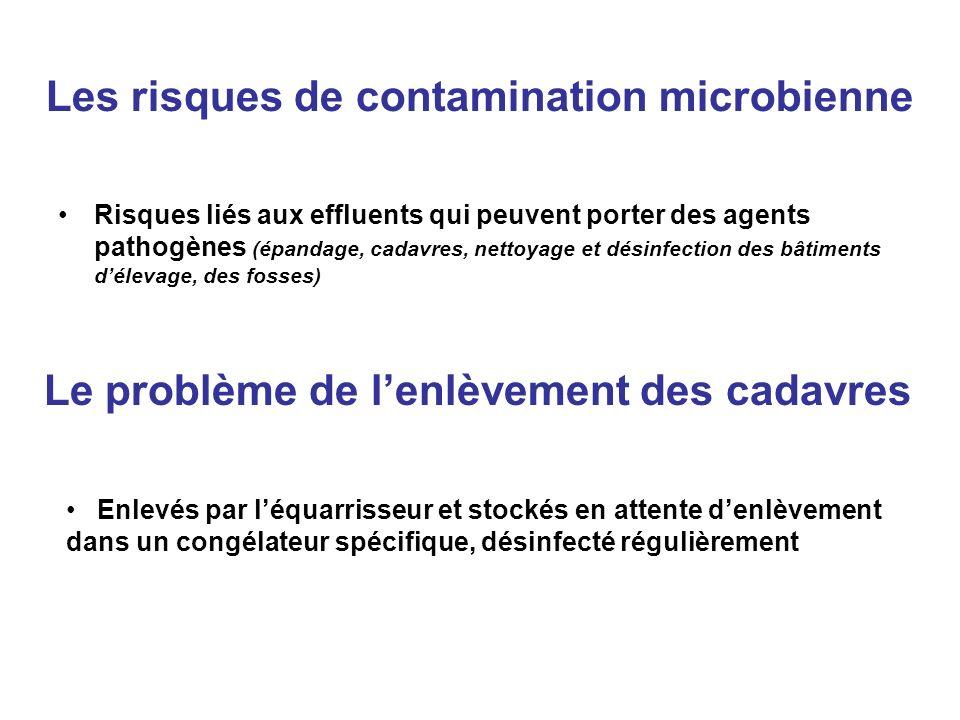 Les risques de contamination microbienne Risques liés aux effluents qui peuvent porter des agents pathogènes (épandage, cadavres, nettoyage et désinfe