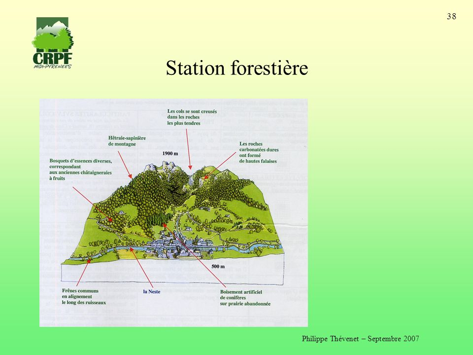 Philippe Thévenet – Septembre 2007 38 Station forestière