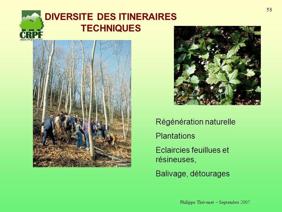 Philippe Thévenet – Septembre 2007 58 DIVERSITE DES ITINERAIRES TECHNIQUES Régénération naturelle Plantations Eclaircies feuillues et résineuses, Balivage, détourages