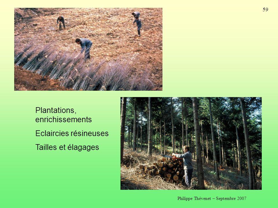 Philippe Thévenet – Septembre 2007 59 Plantations, enrichissements Eclaircies résineuses Tailles et élagages