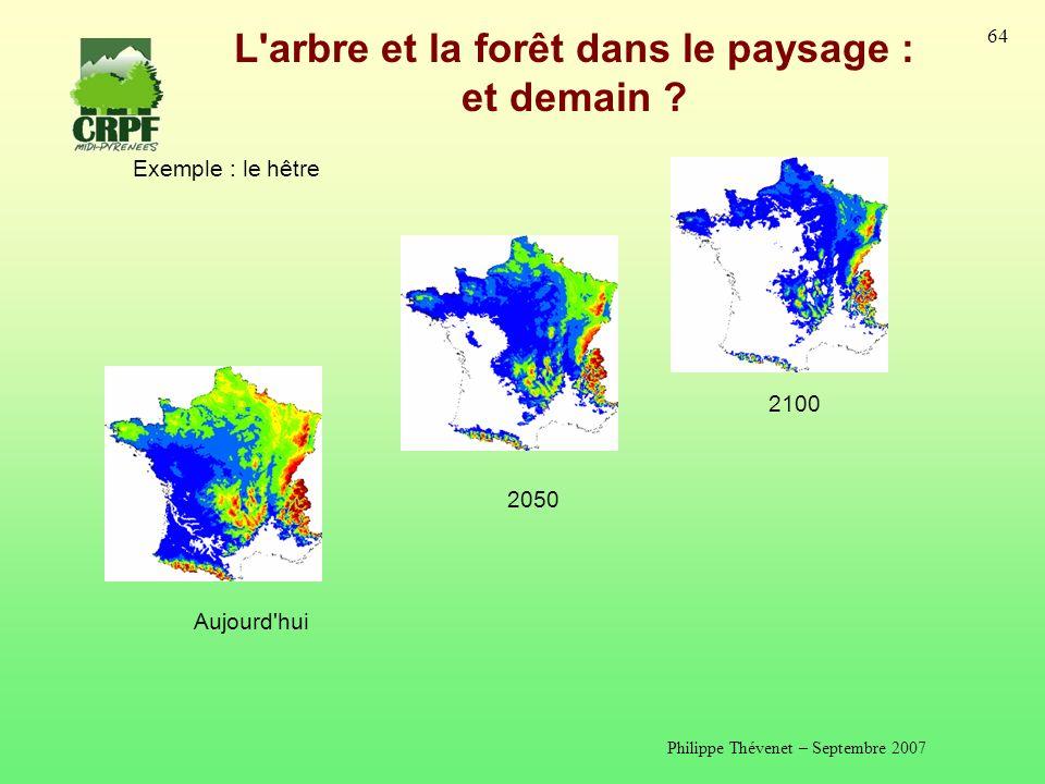 Philippe Thévenet – Septembre 2007 64 L arbre et la forêt dans le paysage : et demain .