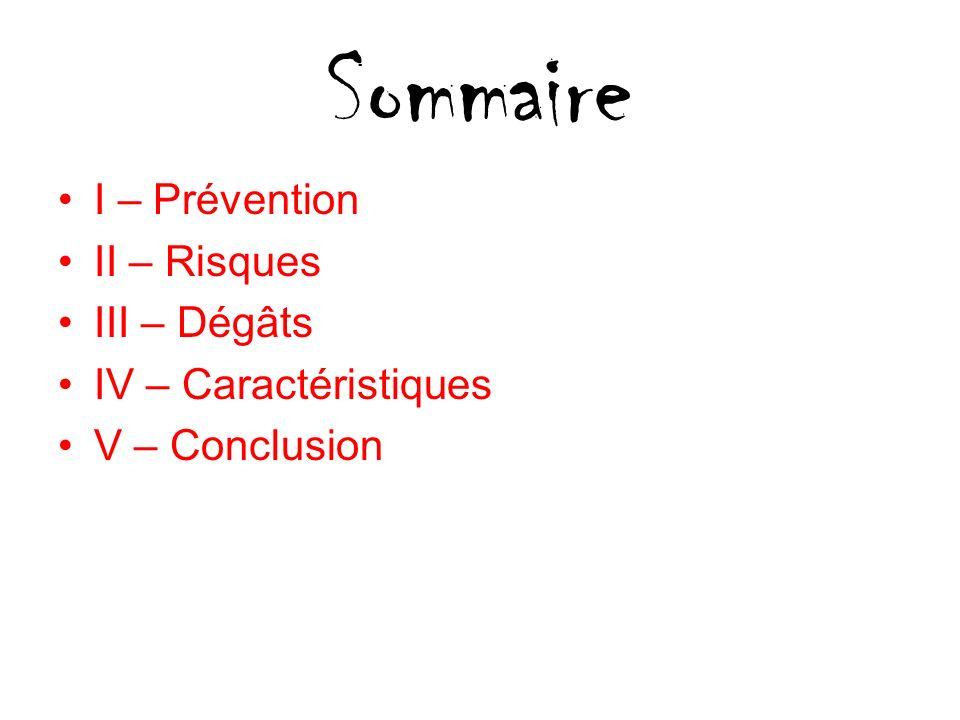 Sommaire I – Prévention II – Risques III – Dégâts IV – Caractéristiques V – Conclusion