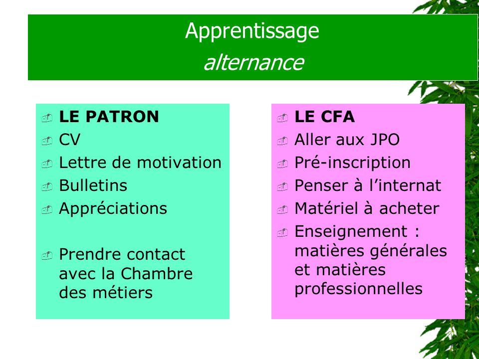 Apprentissage alternance LE PATRON CV Lettre de motivation Bulletins Appréciations Prendre contact avec la Chambre des métiers LE CFA Aller aux JPO Pr