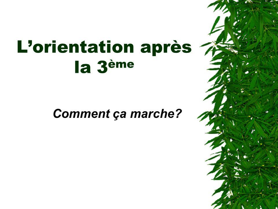Lorientation après la 3 ème Comment ça marche?