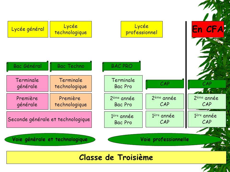 Classe de Troisième Seconde générale et technologique Première générale Première technologique 2 ème année Bac Pro Terminale générale Terminale techno