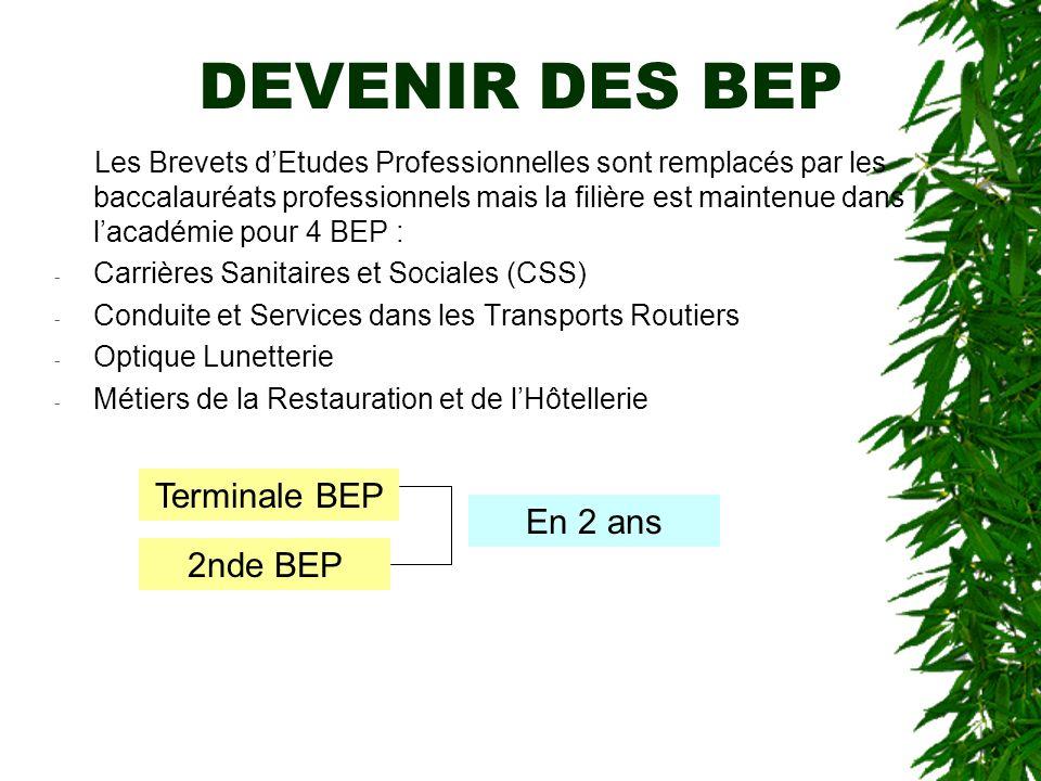 DEVENIR DES BEP Les Brevets dEtudes Professionnelles sont remplacés par les baccalauréats professionnels mais la filière est maintenue dans lacadémie
