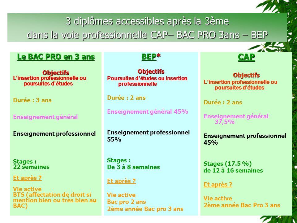 3 diplômes accessibles après la 3ème dans la voie professionnelle CAP– BAC PRO 3ans – BEP CAPObjectifs Linsertion professionnelle ou poursuites détude