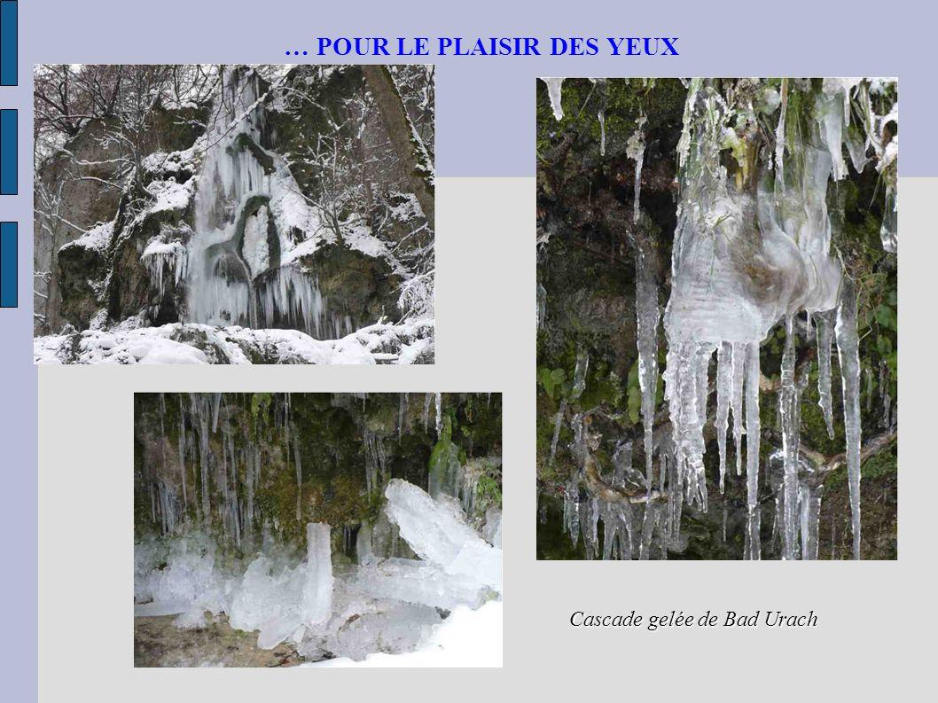 … POUR LE PLAISIR DES YEUX Cascade gelée de Bad Urach