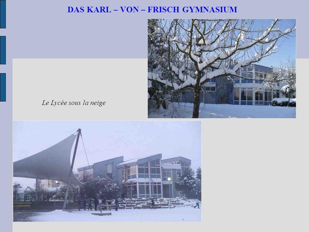 DAS KARL – VON – FRISCH GYMNASIUM Le Lycée sous la neige