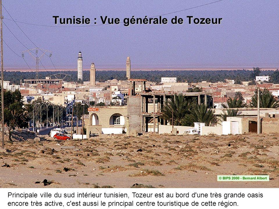 Tunisie : Vue générale de Tozeur Principale ville du sud intérieur tunisien, Tozeur est au bord d'une très grande oasis encore très active, c'est auss