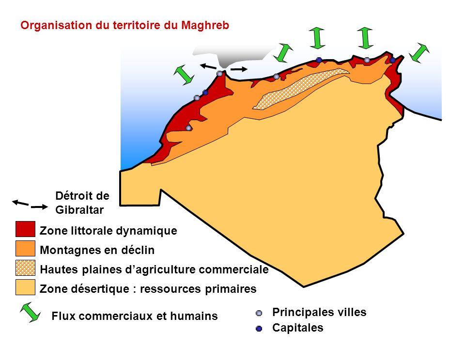 Zone littorale dynamique Montagnes en déclin Hautes plaines dagriculture commerciale Zone désertique : ressources primaires Flux commerciaux et humain